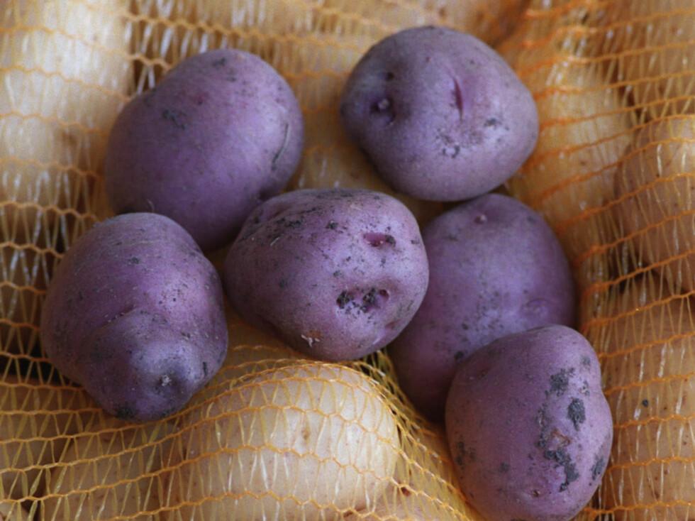 Nei, disse potetene har ikke blitt rammet av en skummel potetpest. De er bare svært rike på supersunne antioksidanter.  Foto: colourbox.com
