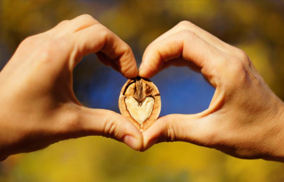 VALNØTTER: Er proppfulle av sunne næringsstoffer. Spiser du syv om dagen kan dette også senke nivået av skadelig kolesterol, redusere stress og minske risikoen for utvikling av brystkreft, har tidligere forskning vist.  Foto: Getty Images/iStockphoto