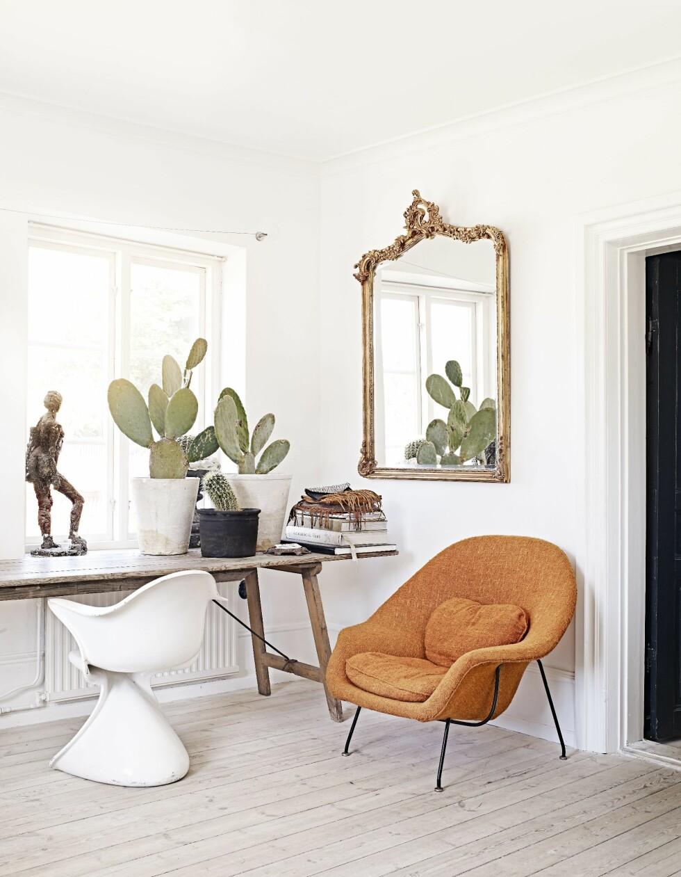 Den oransje stolen er en original Saarinen fra 40-tallet. Speilet er kjøpt på auksjon. Marie elsker kaktuser, hun påstår hun mangler grønne fingre. Skulpturen i vinduet kjøpte hun i et slott i Skåne. Den ble prutet ned fra 2500 til den ynkelige 500-lappen som var det eneste Marie hadde i lommeboken... Foto: Sara Svenningrud