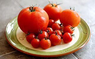 4 ting du bør vite om tomater