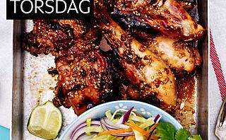Kylling med honning, sesamfrø og nudelsalat
