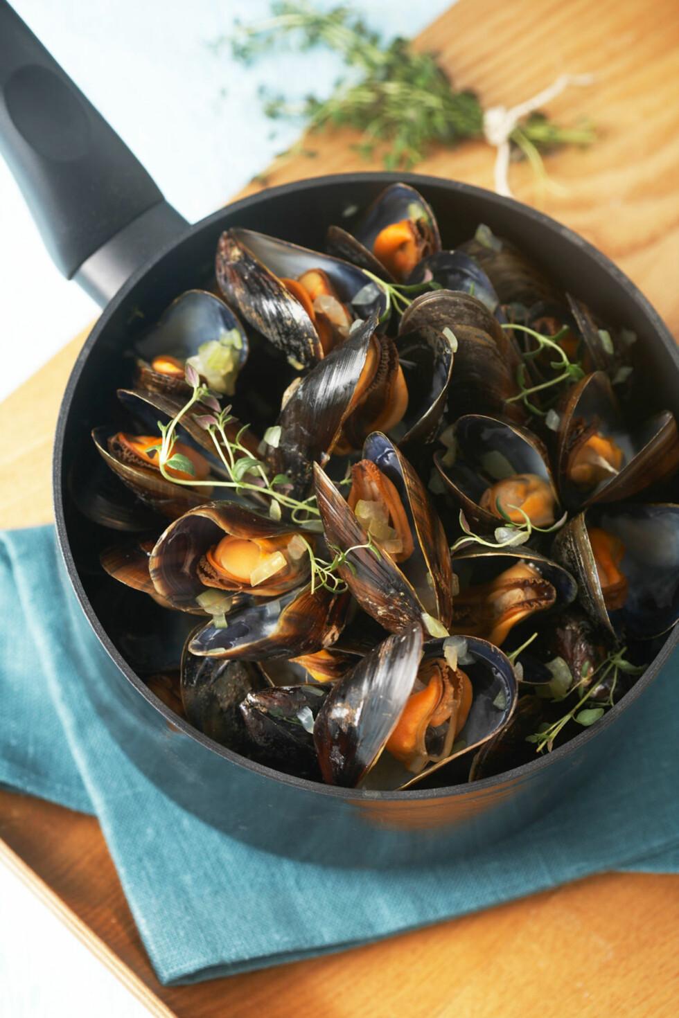 BLÅSKJELL I HVITVIN: Dette er den klassiske, franske måten å servere blåskjell på. Vi har kokt dem, men du kan også tilberede i aluminiumsfolie over et bål eller på grillen.  Foto: Synøve Dreyer