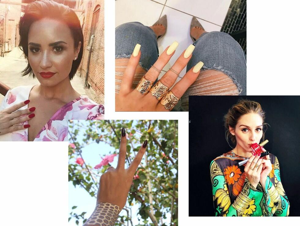 GJØR SOM KJENDISENE: (f.v.) Demi Lovato, Beyonce, Kylie Jenner og Olivia Palermo. Foto: Scanpix