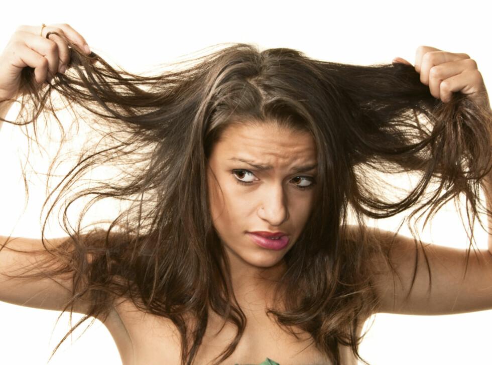 KAN GI FETT HÅR: Renser du ikke hårbørsten regelmessig, vil produktrester og fett fra hodebunnen overføres til håret ditt, noe som raskt kan gjøre det fett.  Foto: Thinkstock.com