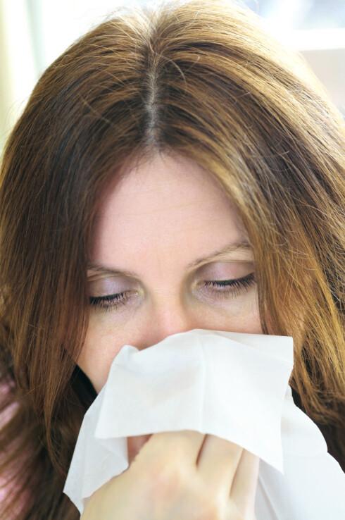FORKJØLA? I hvitløken finnes naturlig penicilin som motvirker forkjølelse og betennelser.  Foto: Scanpix
