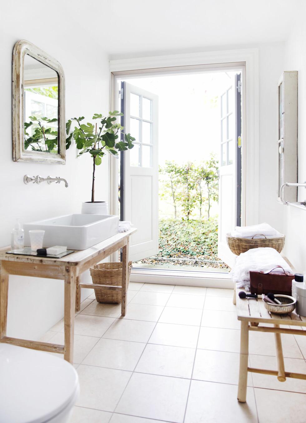KONTRASTER: Tines bad har maling på alle flater og kun fliser på gulvet. Hun har innredet med en blanding av nytt og gammelt med speil fra loppemarked og et lite fikentre. Toalettvesken på benken er fra hennes egen kolleksjon.  Foto: Yvonne Wilhelmsen