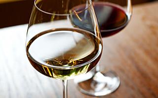 Får du prestasjonsangst når du må velge vin?