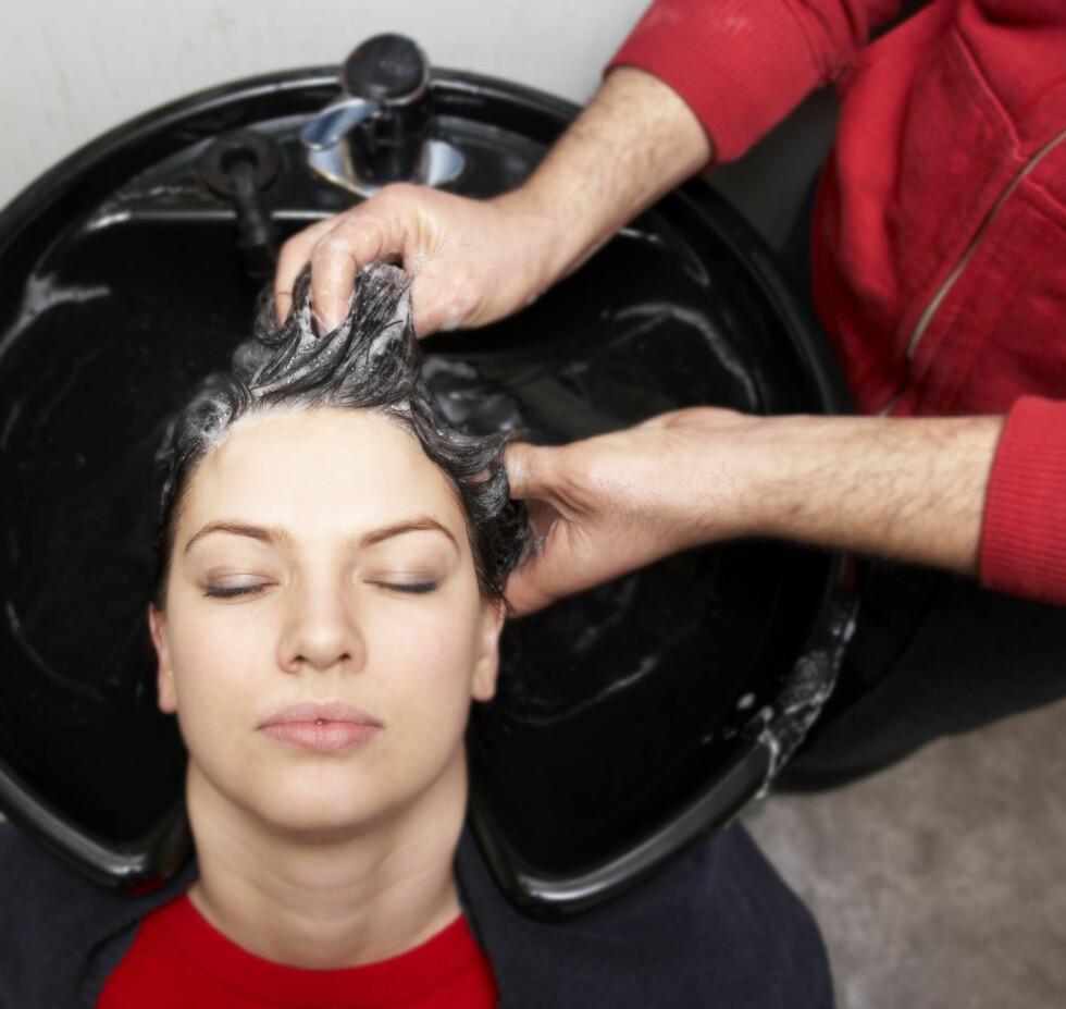 Washing hair using shampoo - hair salon Foto: Scanpix