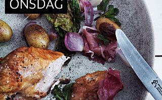 Kylling med stekt salat og syltet løk