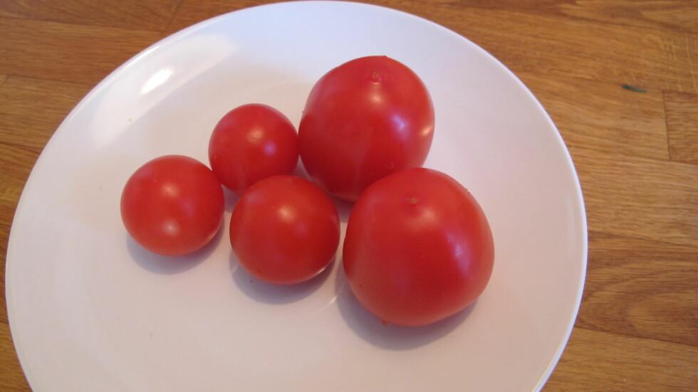 VELLAGRET: Ved å legge tomatene med stilksåret ned, holder de seg fine lenger. Foto: Stine Okkelmo