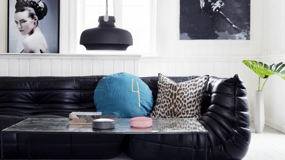 <strong>BLÅTT OG SVART:</strong> Blått og svart er supre farger i stua. I år skal også store bilder skal opp på veggene, og grønne planter inn i stua.  Foto: Yvonne Wilhelmsen