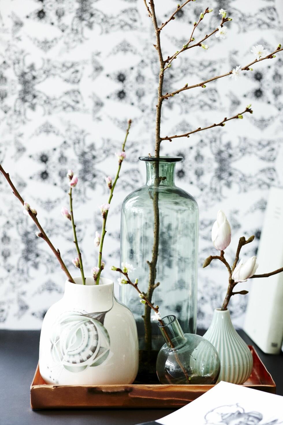 Tips: Sett forskjellige vaser med kvister på et brett og lag en vakkert vårlig utstilling. Da kan du også flytte rundt på brettet, alt etter hvor du trenger en ekstra vårlig touch.  Foto: Mette Wotkjær