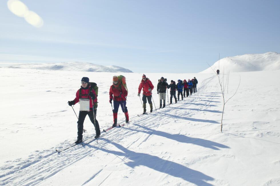 FJELLTUR: DNT arrangerer også flere singelturer for de som ønsker å være med på det. Foto: Sindre Thoresen Lønnes / Den Norske Turistforening