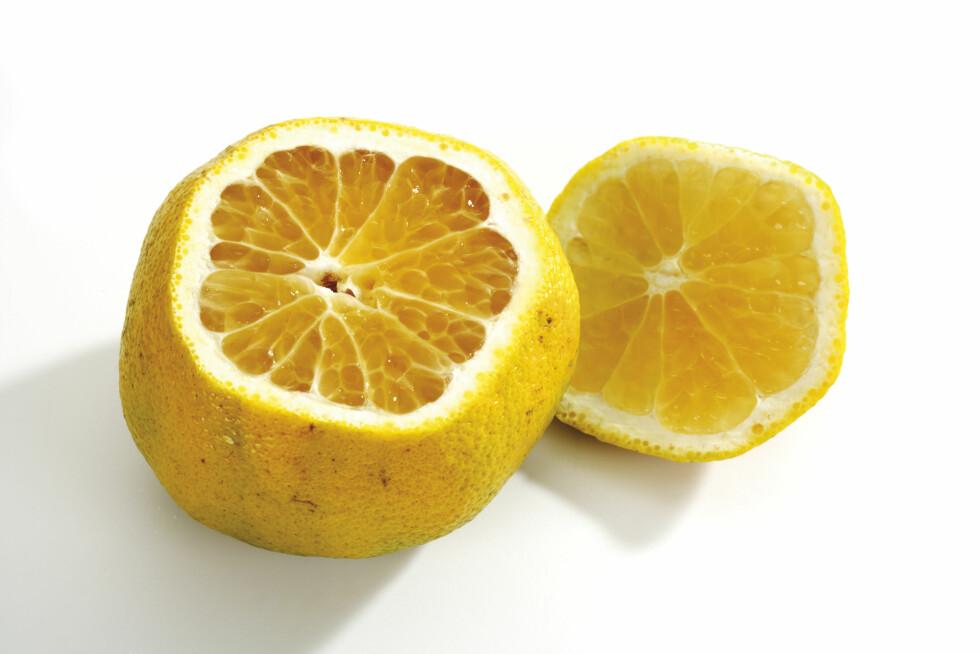 UGLI: Ugli er sannsynligvis en krysning mellom tangerin, appelsin og grapefrukt. Den smaker søtt og inneholder masse C-vitamin.  Foto: tunedin - Fotolia