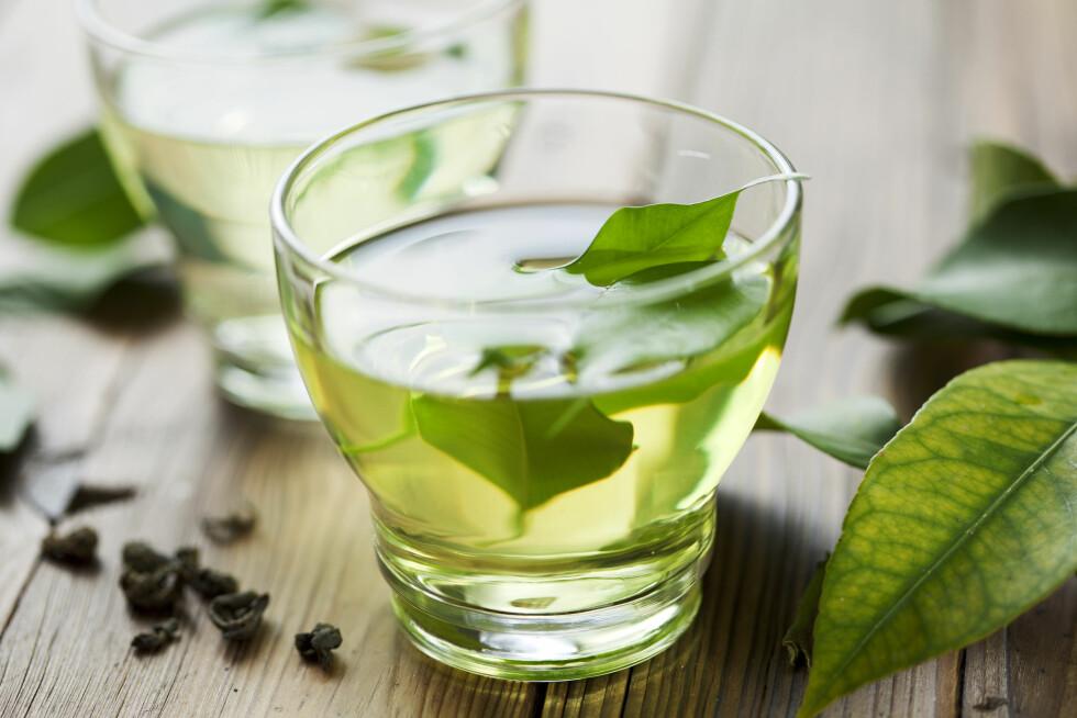 GRØNN TE GIR VEKTTAP: Flere studier har vist at katekinene, som er en type antioksidanter, i grønn te kan føre til vekttap.  Foto: Liv Friis-larsen - Fotolia