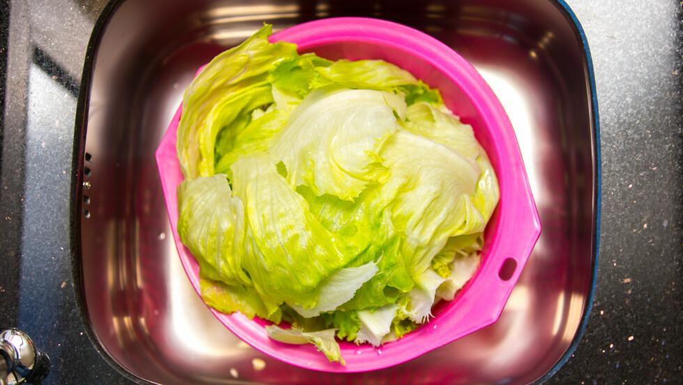 SUNN, MEN IKKE SUNNEST: Isbergsalat og andre lyse salater er ikke de mest næringsrike. Se hvilke som er smartere valg. Foto: Silverstream - Fotolia