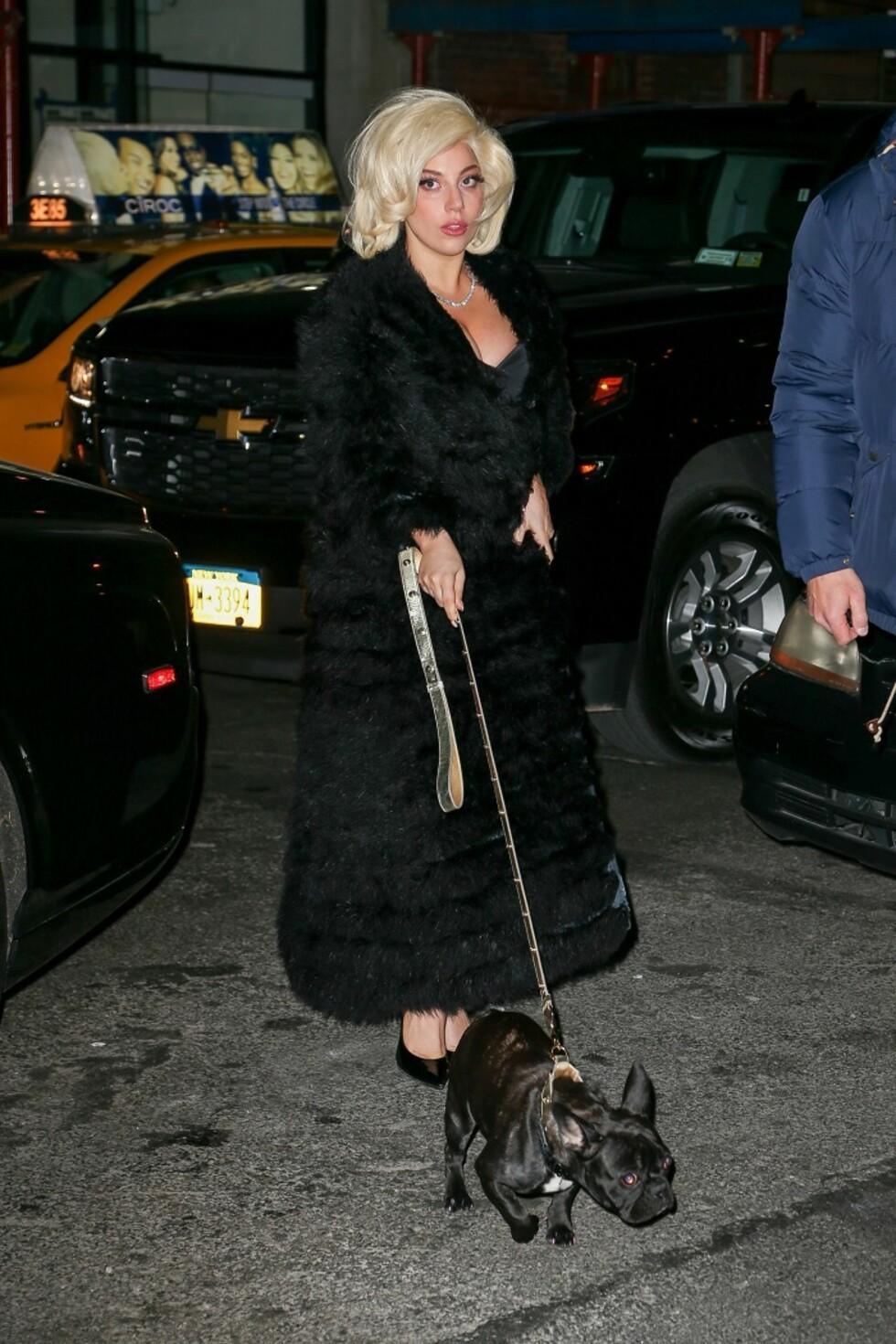 Lady Gaga tok med seg både hunden og finstasen på middag i New York. Foto: All Over