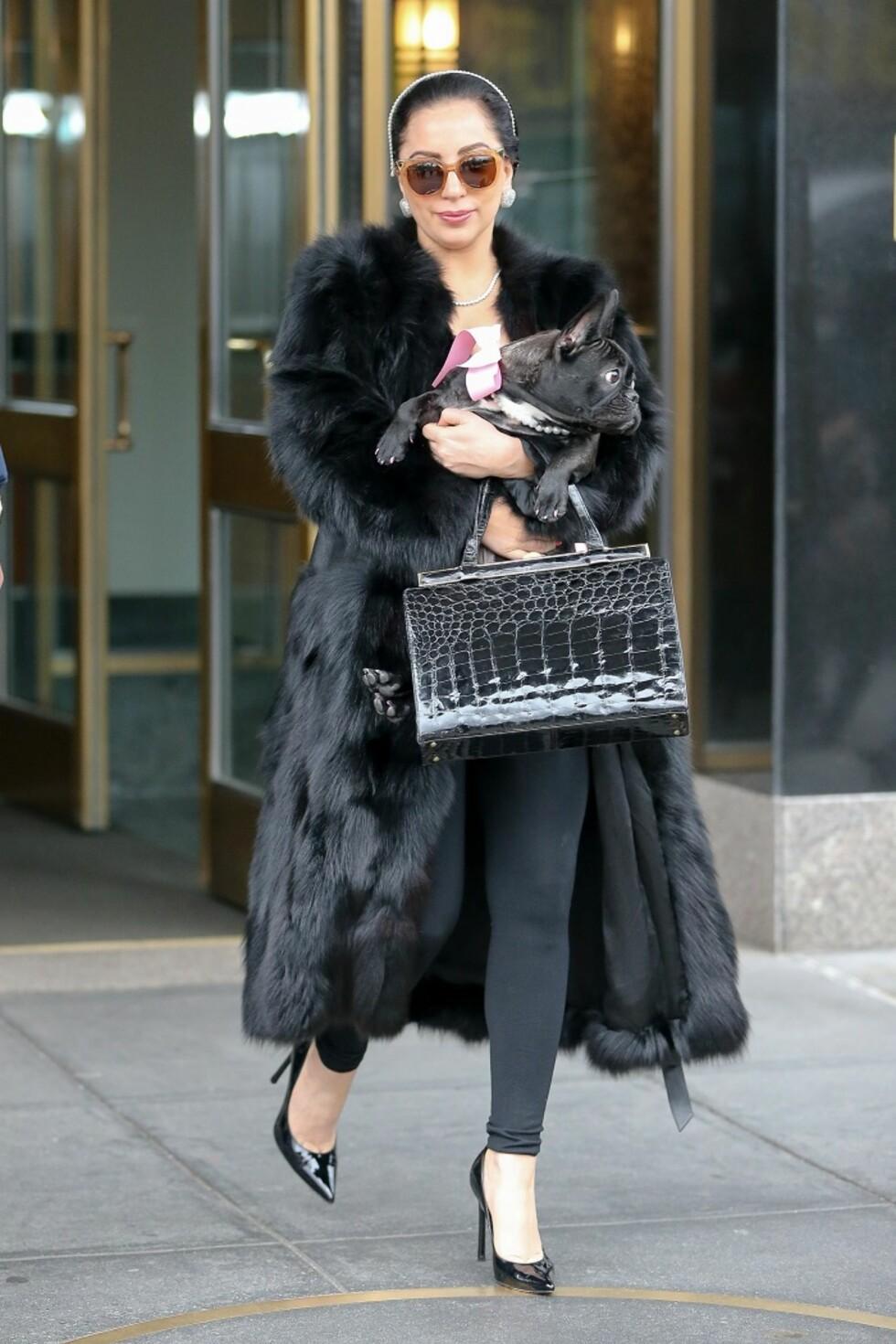 Gaga hunden Asia hadde matchende perler da de reiste fra New York i desember. Foto: All Over