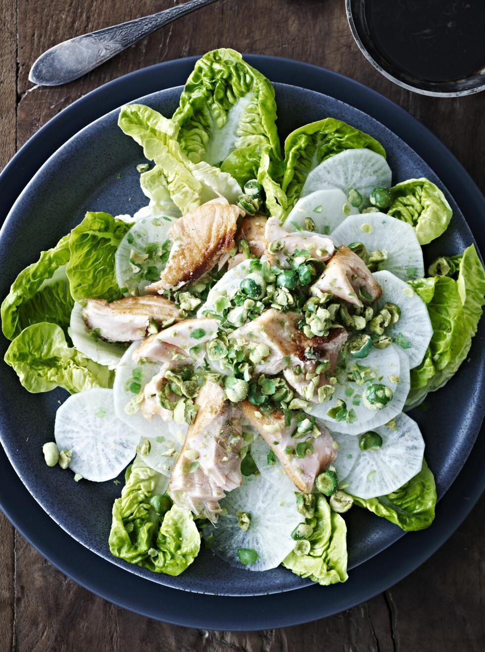RASK SALAT: Salaten er superrask å lage. Det er risen som tar tid. Bytt dem ut med nudler eller brød hvis det skal gå fort! Foto: All Over Press