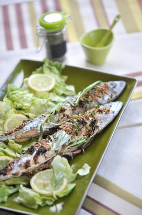 FET FISK: Selv om det er den beste kilden til vitamin D, skal det ganske mye fet fisk til for å dekke dagsbehovet. Foto: All Over Press
