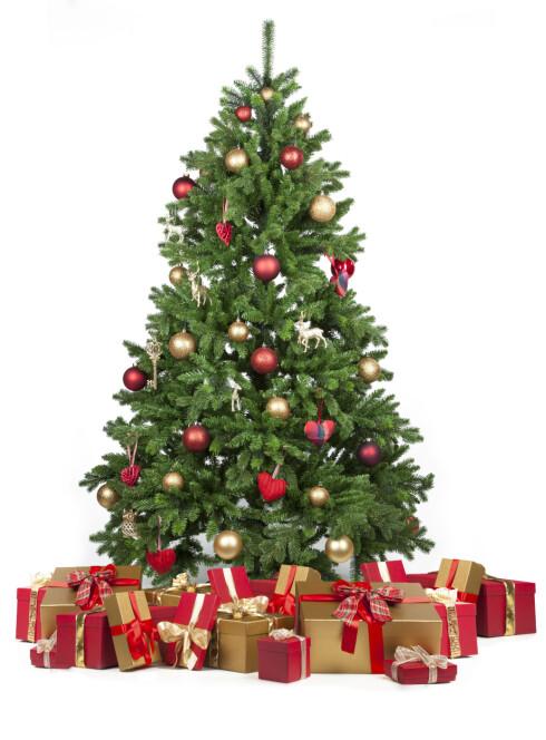 <strong>JULETREALLERGI:</strong> For dem som er allergisk mot midd kan juletreet skape stor irritasjon.  Foto: Fotolia