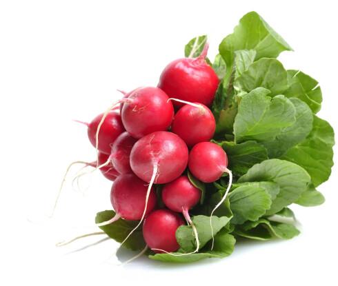 NYTTIG FOR FORDØYELSEN: Reddiker er fulle av C-vitaminer, som kan bidra til å redusere trøtthet. I tillegg er den full av kostfiber! Foto: Colourbox