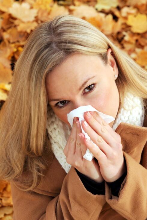 SYK? Høsten er høysesong for sykdom, men du kan enkelt styrke immunforsvaret med riktig mat.  Foto: RioPatuca Images - Fotolia