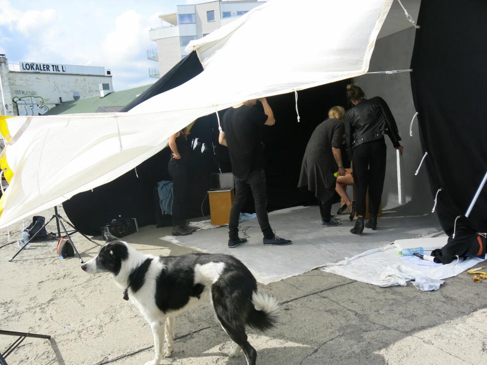Se backstage-bildene fra vår covershoot!