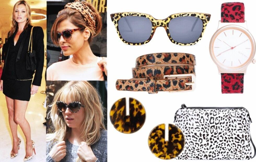 Gjør som stjernene og bruk leopardmønster i antrekket!
