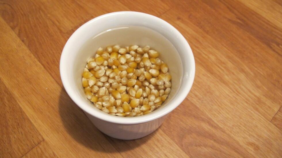 Ved å legge popcornet i bløt i ti minutter først blir skallet mykere, så popcornet lettere popper.  Foto: Stine Okkelmo
