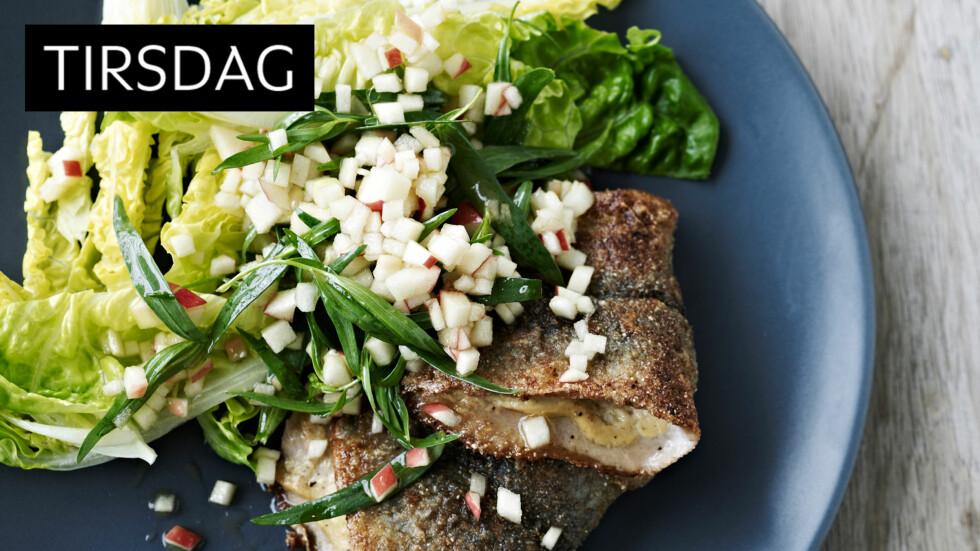 SUNN TIRSDAG: Sild er både sunn og veldig god mat som fortjener å spises mye oftere! Foto: All Over Press
