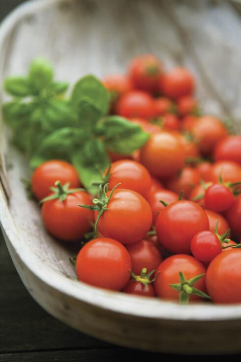 FARGER ER BRA: Fargerik frukt og grønnsaker gjør ikke bare salaten mye mer innbydende, men også sunnere. Disse er som regel en kilde til en god dose antioksidanter! Foto: Sarah Heneghan / Flowerphotos/ARDEA/Ardea/All Over Press