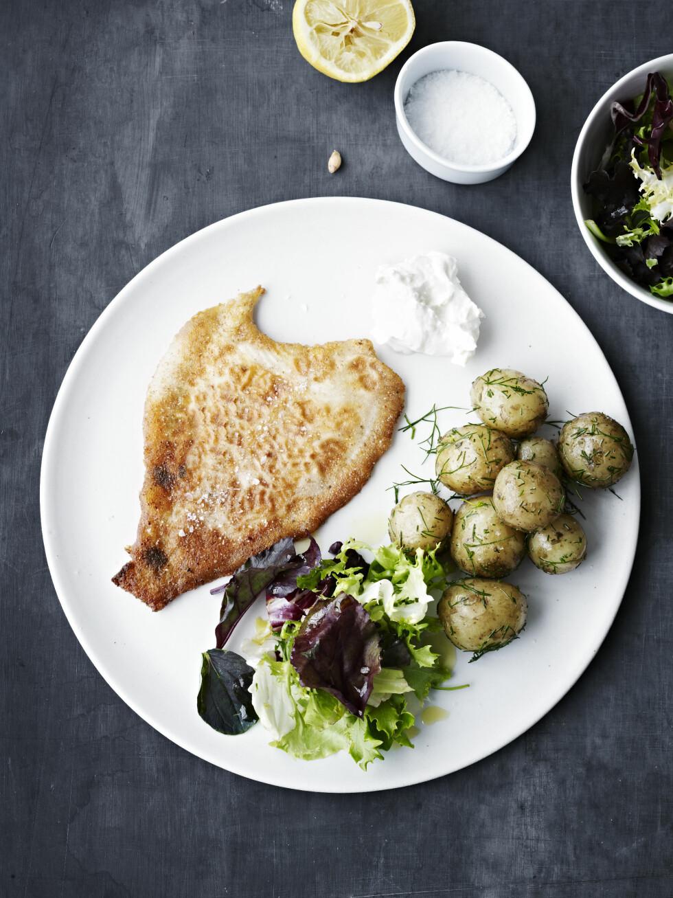 HERLIG FISKERETT: Nypoteter, dill og nydelig rødspette passer perfekt til middag! Foto: All Over Press