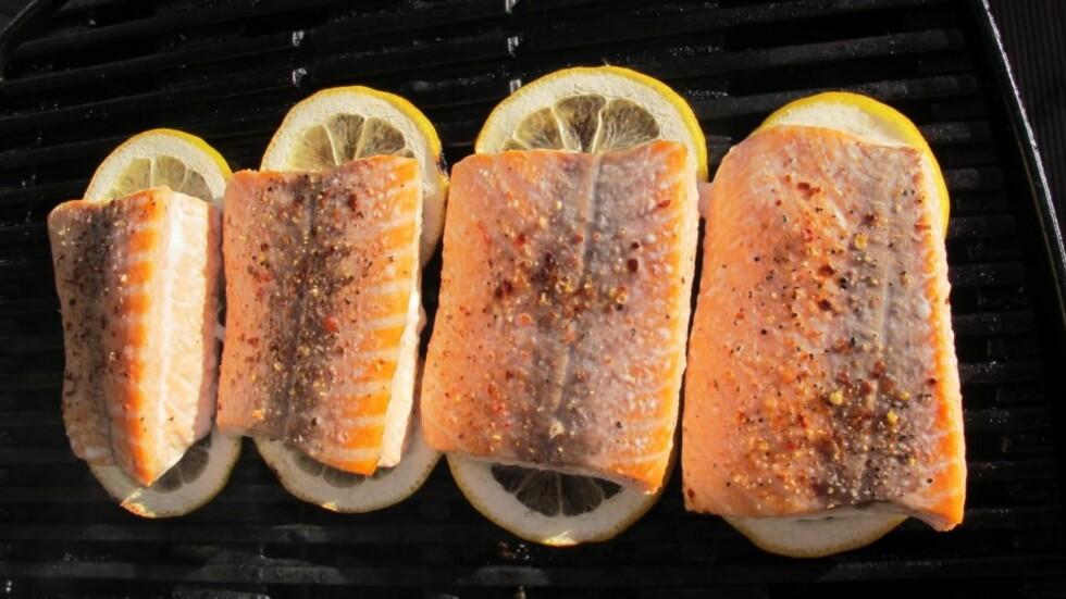 SUNT OG GODT OG FETT: Laks er en fet fisk som gir deg godt fett, omega 3, D-vitamin og rikelig med proteiner. Perfekt på sommergrillen! Foto: Stine Okkelmo