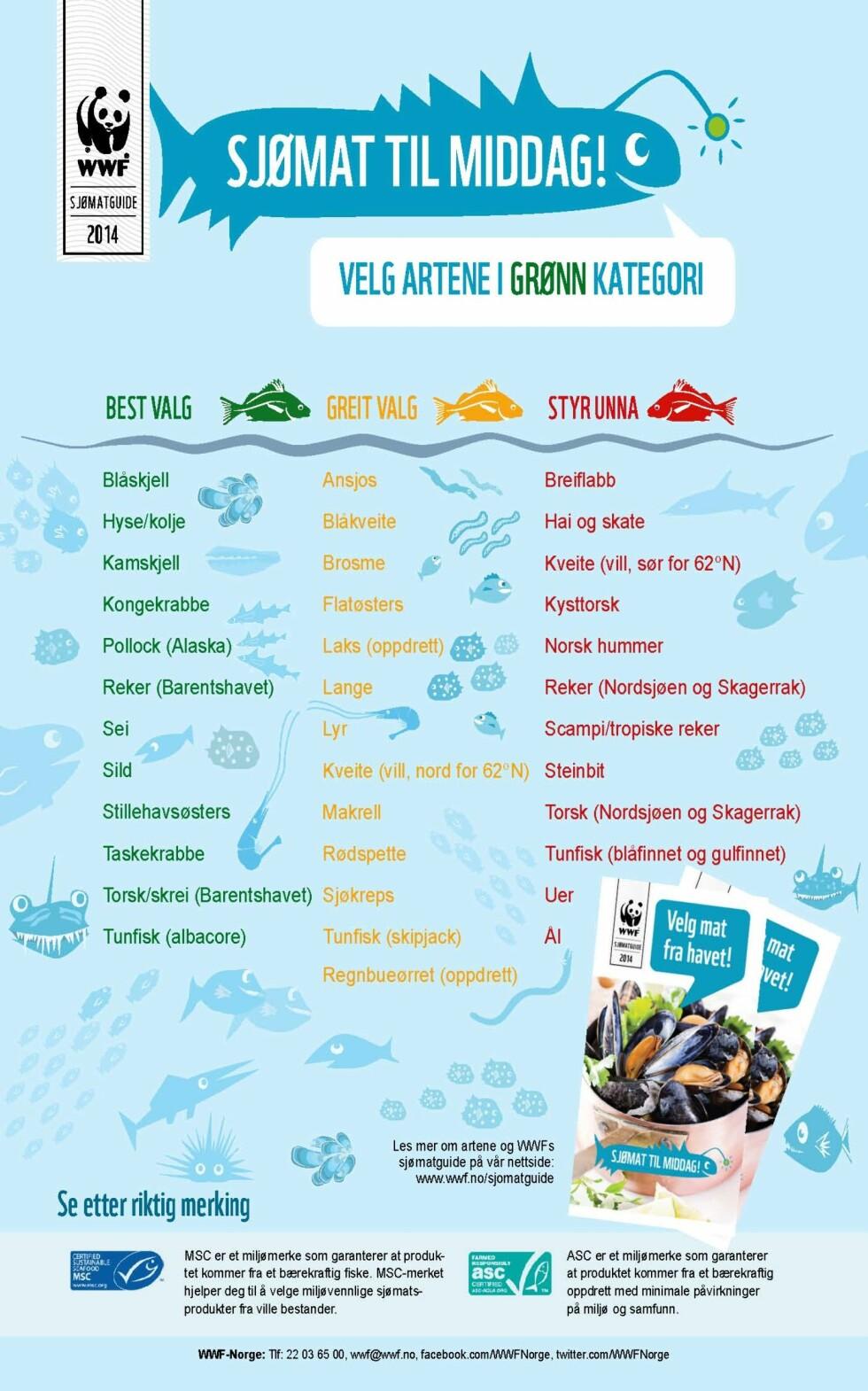 JA-FISK/NEI-FISK: Listen til WWF Norge er delt inn i tre kategorier: fisk du kan spise med god samvittighet, fisk du bør være kritisk til og fisk du bør styre unna.