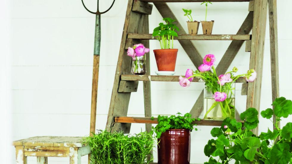 SMART: Få plass til alle plantene du ønsker deg - innendørs eller på terrassen! Foto: Jeanette Lunde