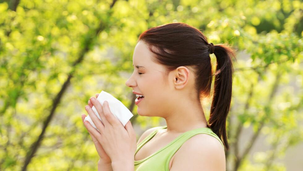 AAATSJOOO: Du nyser, men er det pollenallergi eller en vanlig forkjølelse? Foto: Piotr Marcinski - Fotolia