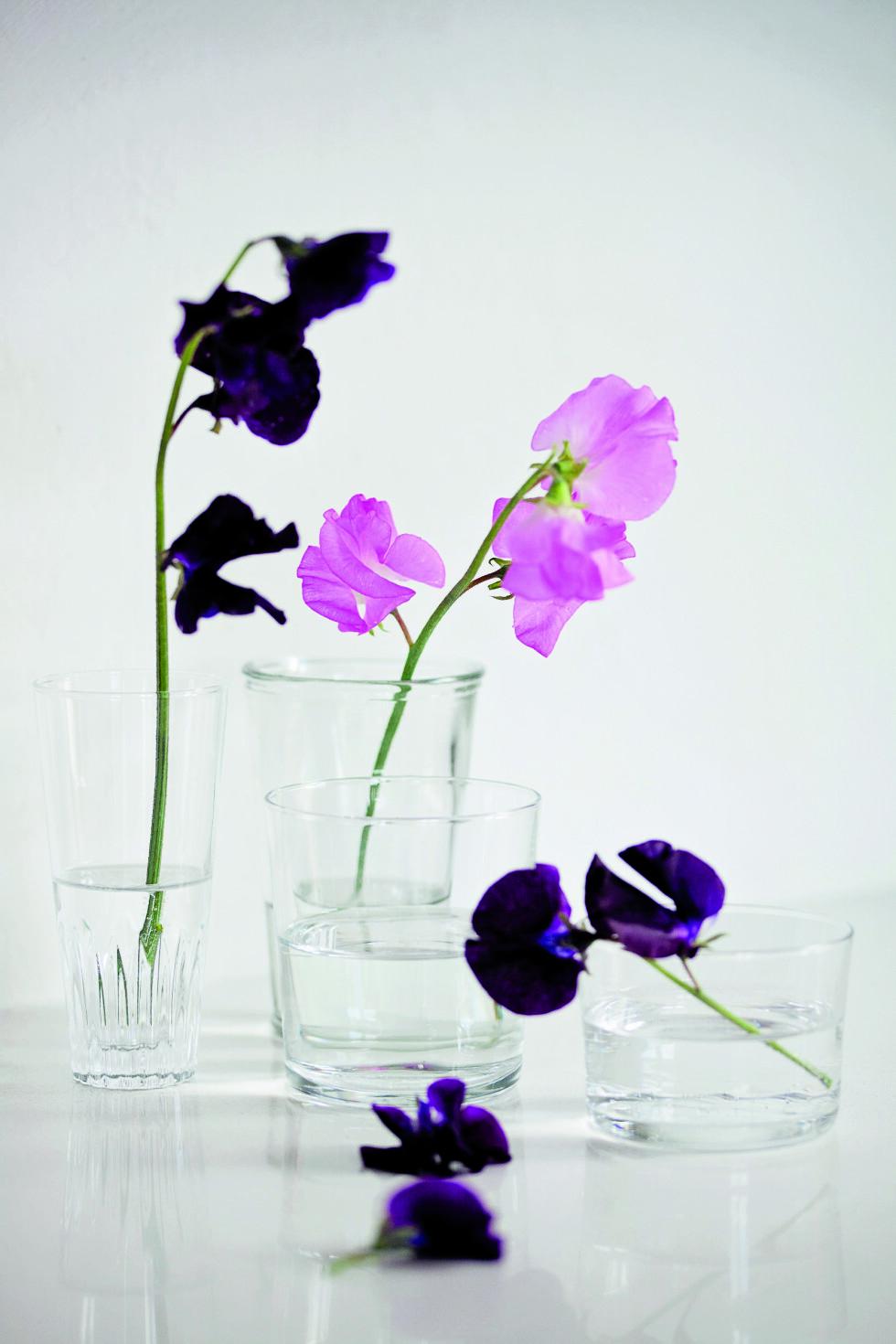 <strong>BRUK KJØKKENGLASSENE:</strong> Det gir et rent og fint uttrykk, og alt fokuset blir på selve blomstene.  Foto: Jorunn Tharaldsen