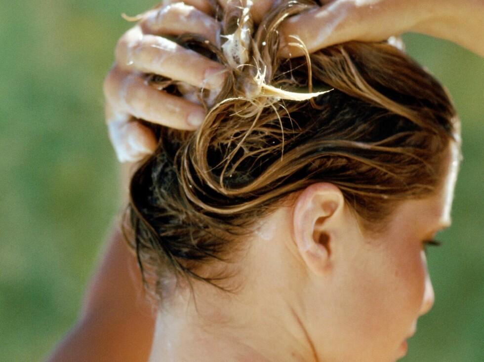 MER KAMBART: En leave-in-kur gir håret fukt og pleie, pluss at det blir enklere å gre ut. Sliter du med statisk elektrisk hår, kan en slik kur være løsningen.  Foto: Colourbox
