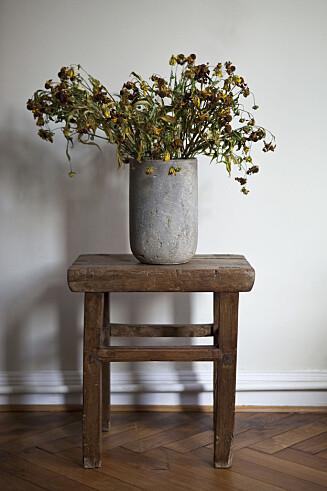 <strong>IKKE GØY:</strong> Døde planter er ikke hyggelig å komme hjem til.  Foto: (c) Halfdark /fstop/Corbis/All Over Press