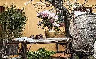 Kjøp hagemøblene brukt