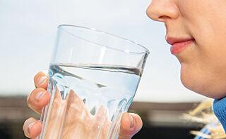 Derfor bør du drikke lunkent vann