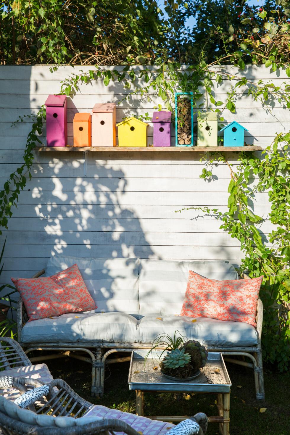 SELVLAGET OG FARGERIKT: Dorhe har laget disse søte fuglehusen som fargelegger den koselige sitteplassen. Foto: All Over Press