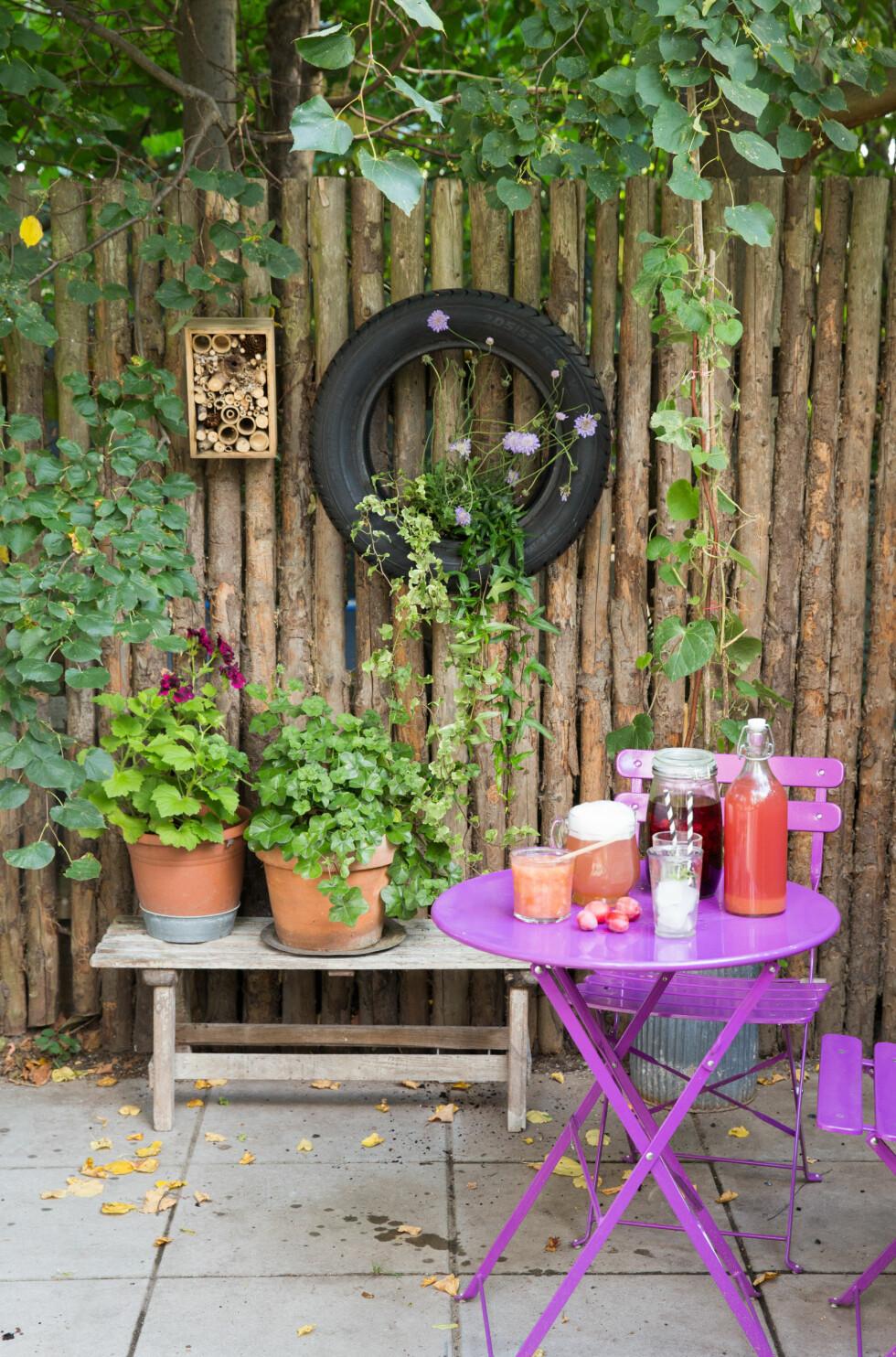 KREATIV PYNT: ET bildekk kan faktisk pynte opp i hagen! Foto: All Over Press