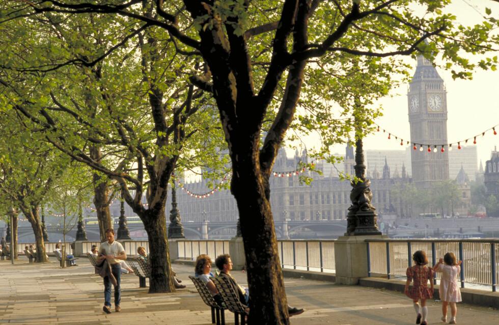 HERLIG: Ah. Bruke en time av de 30 på en benk ved Themsen og slikke sol ...