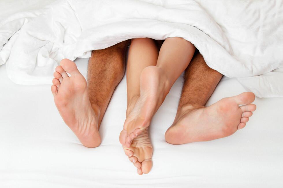 De fleste synes det er best å finne en ny sengepartner om sommeren.  Foto: Erwin Wodicka