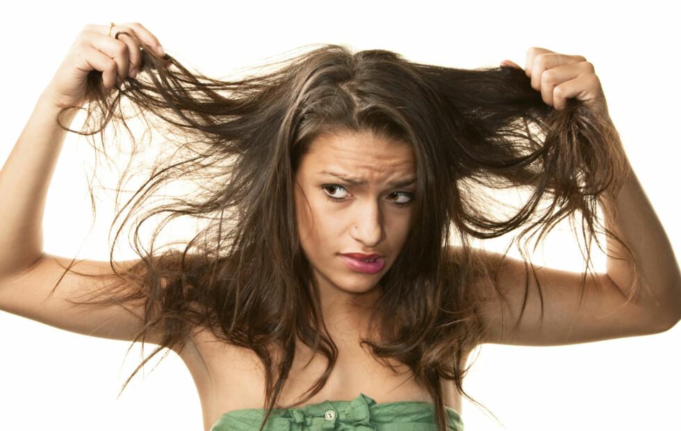 """TALG OG STYLING: Ifølge Truls Andersen, frisør og Education Manager for hårpleieprodusent Kérastase, er talgproduksjon blant de vanligste årsakene til fett hår, mens """"feil"""" pleie og stell er årsaken til at tuppene og lengdene blir tørre og slitt."""