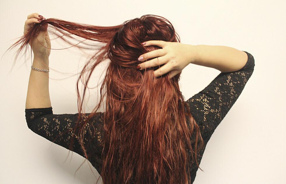 <strong>HÅROLJER:</strong> Feil bruk kan resultere i en fettete look. KK testet arganolje i tørt hår og over ser du resultatet. Foto: Ronja Rognmo