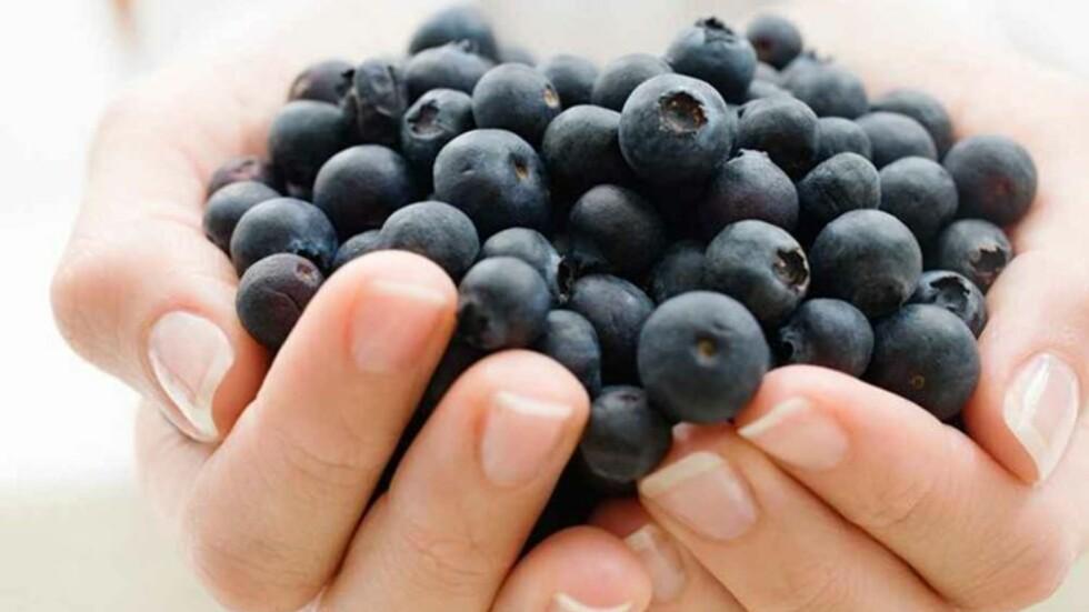 SUNT OG GODT: Blåbær inneholder mange gode næringsstoffer, men er samtidig kalorifattige. Og bærene mister ikke sin gode næring av å fryses, så du kan trygt velge den velkjente skogsblåbæra i frysedisken.