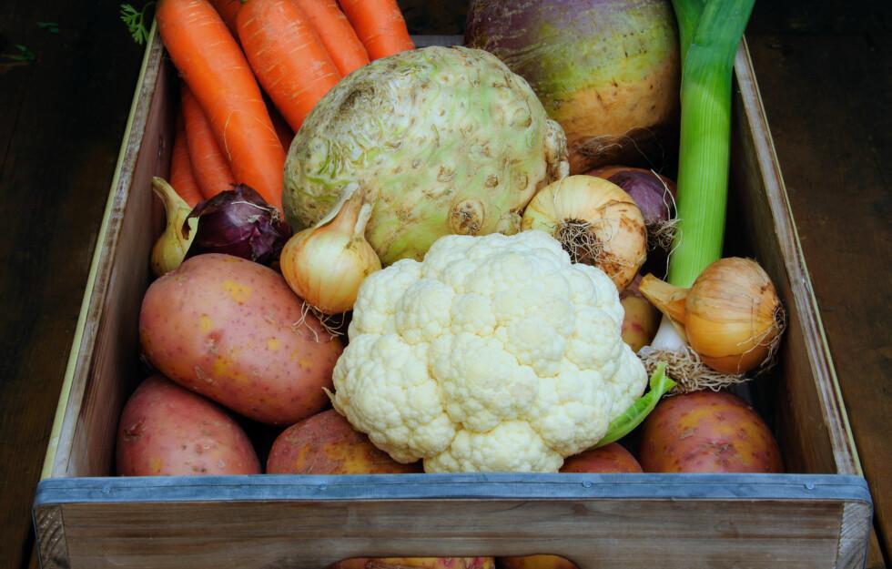 PERFEKT VINTERMAT: Sjekk de fine grønnsakene du bør spise nå i vinter. Foto: Colourbox
